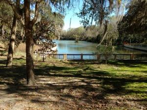 A small lake at Topsail Hill Beach Park.
